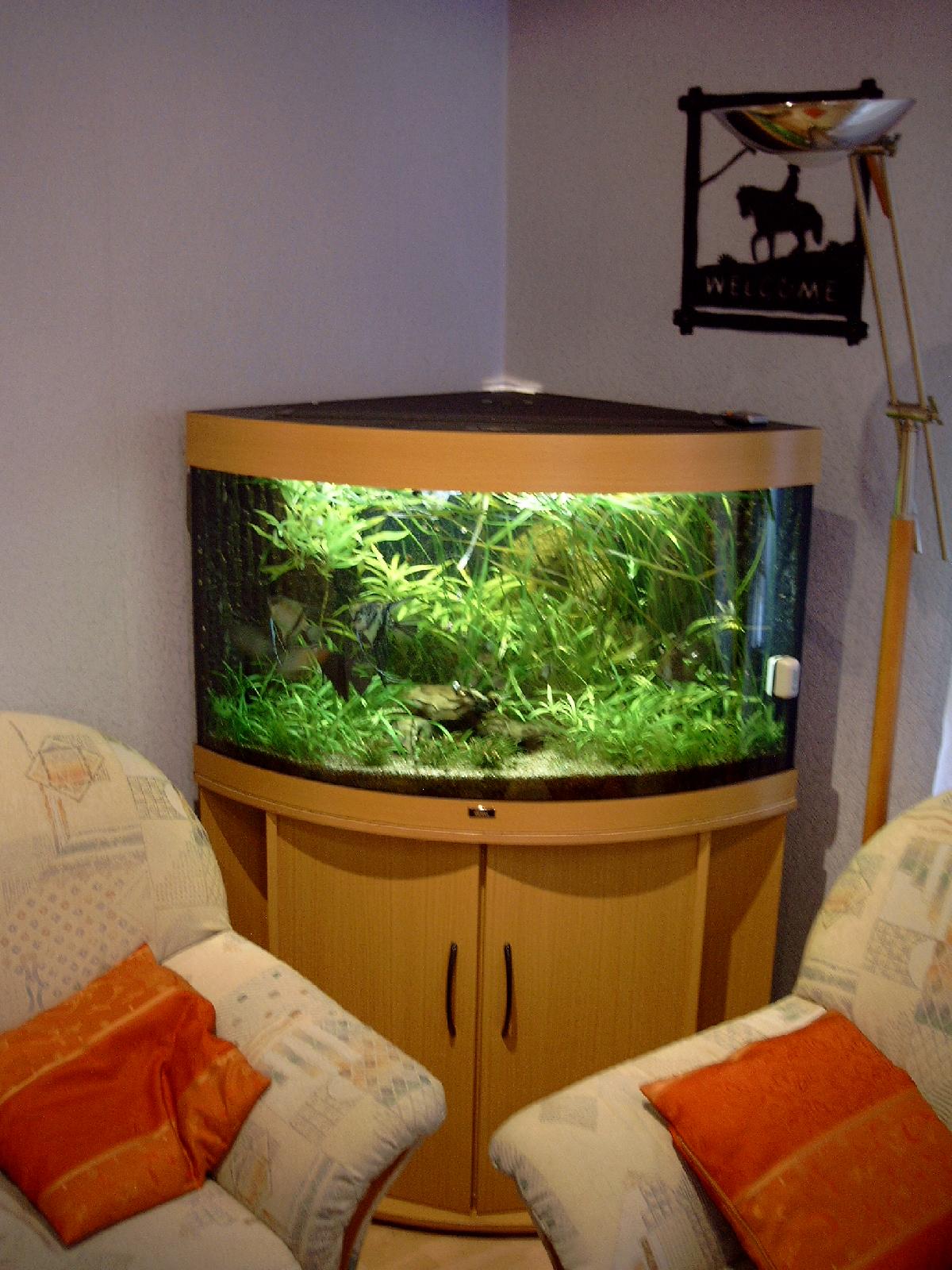 aquarien. Black Bedroom Furniture Sets. Home Design Ideas